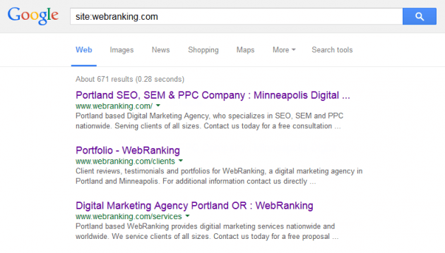 Google Site Search - site:webranking.com