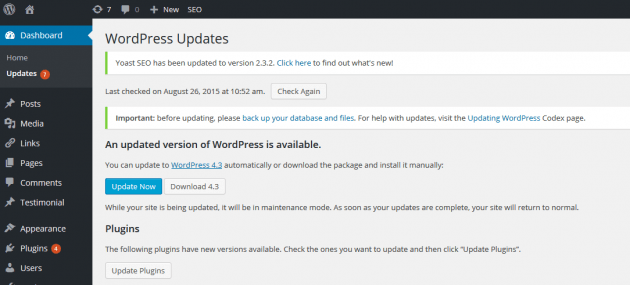 WordPress Updates Section