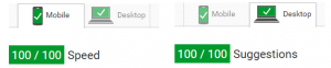 Perfect Pagespeed Score